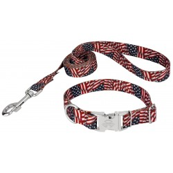 Patriotic Tribute Premium Collar & Leash
