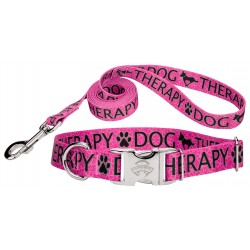 Pink Therapy Premium Dog Collar & Leash