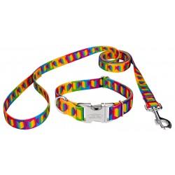 Premium Rainbow Hearts Dog Collar & Leash