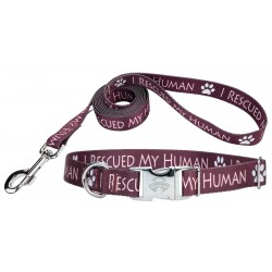 I Rescued My Human Premium Dog Collar & Leash