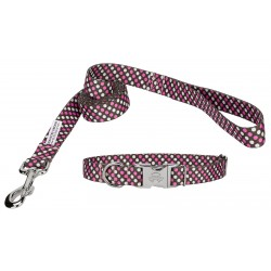 Shibuya Premium Collar & Leash