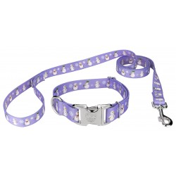 Snowman Premium Dog Collar & Leash