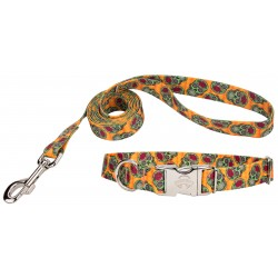 Sugar Skulls Premium Dog Collar & Leash