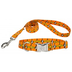 When Pumpkins Fly Premium Dog Collar & Leash