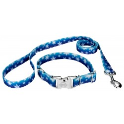 Premium Winter Wonderland Dog Collar & Leash