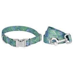 Premium Green Paisley Reflective Dog Collar & Leash