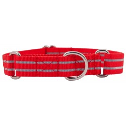 Red Reflective Polyester Martingale Dog Collar