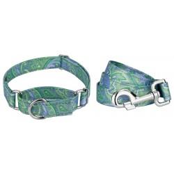 Green Paisley Reflective Martingale Dog Collar & Leash