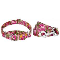 Pink Paisley Reflective Martingale Dog Collar & Leash