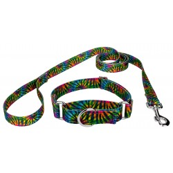 Tie Dye Stripes Reflective Martingale Dog Collar & Leash