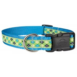 Deluxe Lime Green And Blue Argyle Ribbon Dog Collar Limited Edition