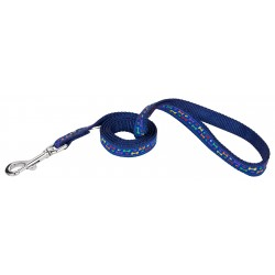 Rainbow Paws and Bones Ribbon on Navy Blue Dog Leash Limited Edition