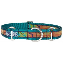 Fall Frenzy Woven Ribbon on Teal Martingale Dog Collar Limited Edition