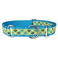 Lime Green And Blue Argyle Woven Ribbon Martingale Dog Collar Limited Edition