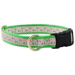 Green and Pink Dots Jacquard Ribbon Dog Collar Closeout