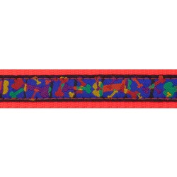 Multi-Colored Bones Ribbon on Neon Orange Dog Leash Limited Edition
