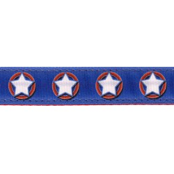 American Star Ribbon Double Sided Dog Leash