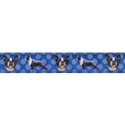 Boston Terrier Ribbon Double Sided Dog Leash