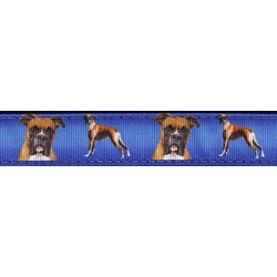 Boxer Ribbon Double Sided Dog Leash Limited Edition
