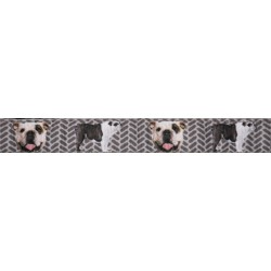 English Bulldog Tough Guy Ribbon Double Sided Dog Leash