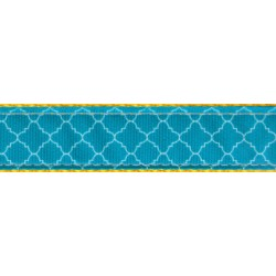 Classy Chic Ribbon Double Sided Dog Leash Limited Edition