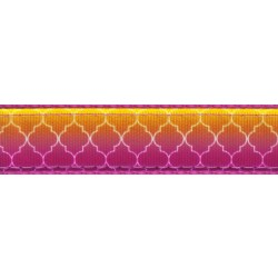 Fabulous Ombre Ribbon Double Sided Dog Leash