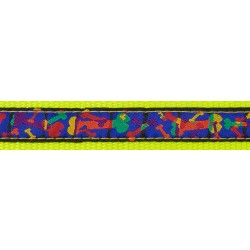 Multi-Colored Bones Ribbon on Hot Yellow Dog Leash Limited Edition