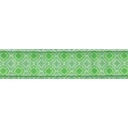 Minty Chic Ribbon Double Sided Dog Leash Limited Edition