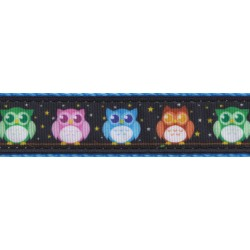Blue Nite Owls Ribbon Double Sided Dog Leash