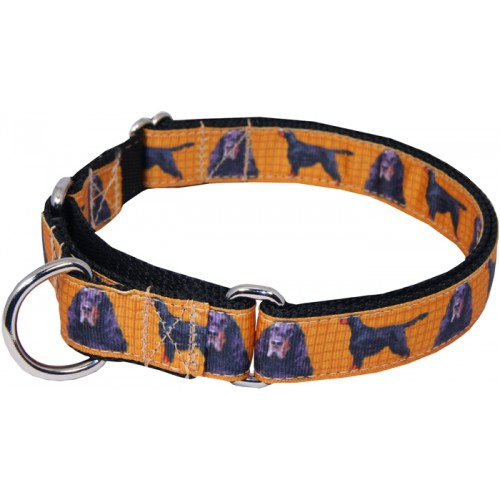 gordon setter ribbon martingale dog collar