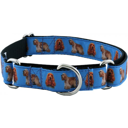 cocker spaniel ribbon martingale dog collar
