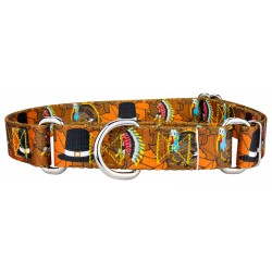 Thanksgiving Tradition Martingale Dog Collar