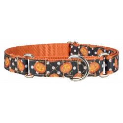 Moonlight Grin Ribbon Martingale Dog Collar