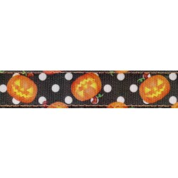 Moonlight Grin Ribbon Double Sided Dog Leash