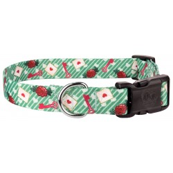 Deluxe Love Letters Dog Collar