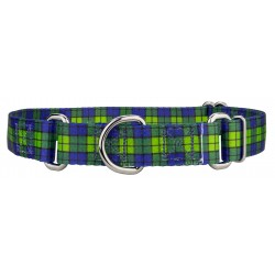 Blue and Green Plaid Martingale Dog Collar