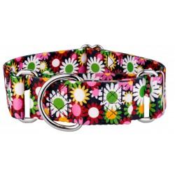 1 1/2 Inch Daisy Fields Martingale Dog Collar