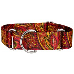 1 1/2 Inch Fire Paisley Martingale Dog Collar