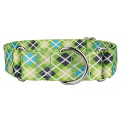 1 1/2 Inch Margarita Argyle Martingale Dog Collar
