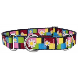 Spring Daisies Martingale Dog Collar