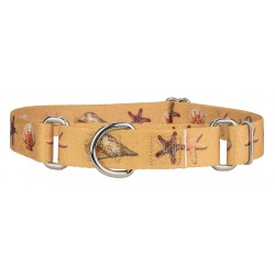 Seashells Martingale Dog Collar