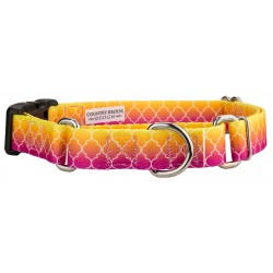 Fabulous Ombre Martingale with Deluxe Buckle