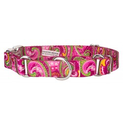 Pink Paisley Martingale with Premium Buckle