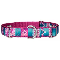 Albuquerque Ribbon Martingale Dog Collar