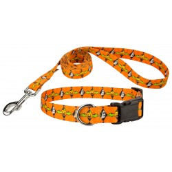 When Pumpkins Fly Deluxe Dog Collar & Leash