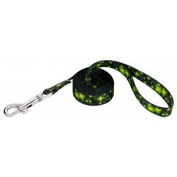 1/2 Inch Clovers In The Wind Featherweight Dog Leash - 4 Foot