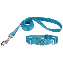 Classy Chic Martingale Dog Collar & Leash