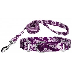 Purple Hawaiian Martingale Dog Collar & Leash