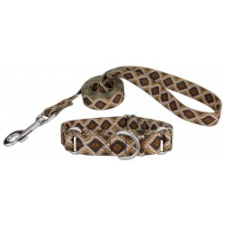 Rattlesnake Martingale Dog Collar & Leash