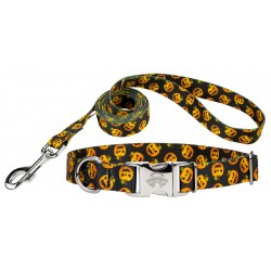Happy Jack Premium Dog Collar & Leash